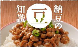 納豆の豆知識