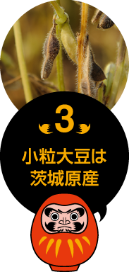 小粒大豆は茨城原産